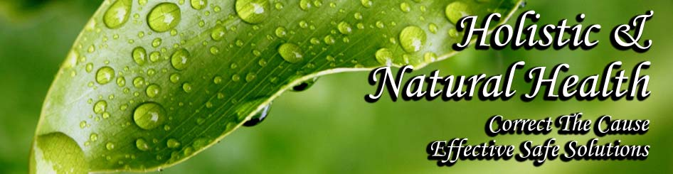 AAA MAIN Holistic Header - green-leaf